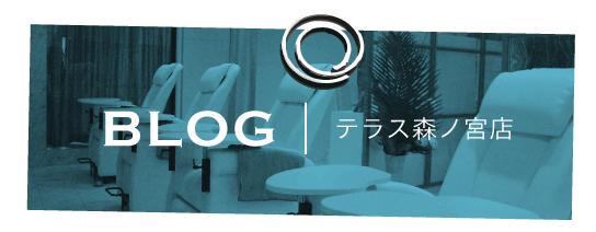 シェリーネイルサロン テラス森ノ宮店ブログ|Blog